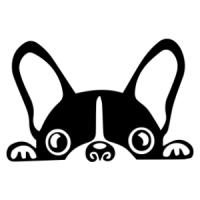 Autómatrica - Francia bulldog - 10x15cm